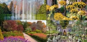 Longwood Gardens pic